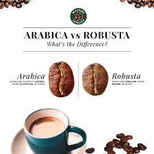 تفاوت ظاهری قهوه عربیکا و ربوستا